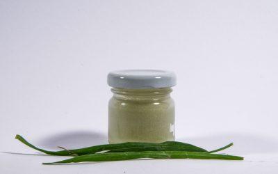 Przepis na pastę z zielonego żyta